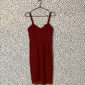 Express Lace Body Con Cocktail Dress